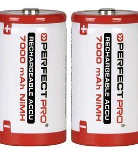 Oplaadbare Batterijen D-Cell 7000mAh | 2 Stuks